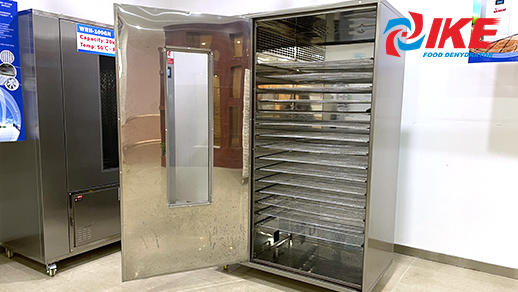 WRH-100B Food Drying Machine With Mesh Trays