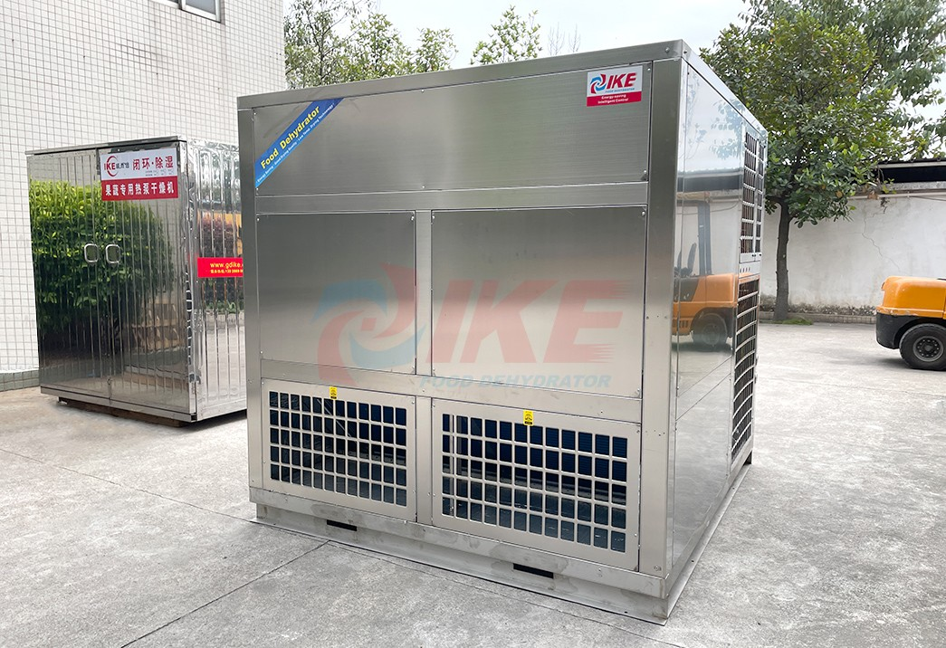 product-DF-2400GW Industrial Fruit And Vegetable Dehydrator Machine-IKE-img