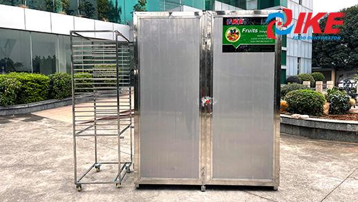 LiveStream-IKE Super Size Cabinet Dryer AIO-DF600TC