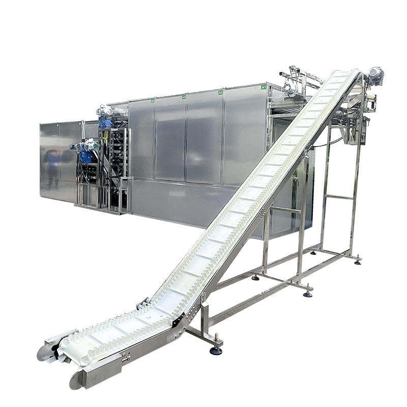 Automatic Industrial Fruit and Vegetable Dehydration Plant