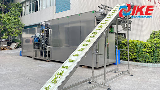MUL-DF Series Belt Drying System for Fruits and Vegetables