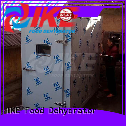industrial fruit dryer machine dehydrating IKE