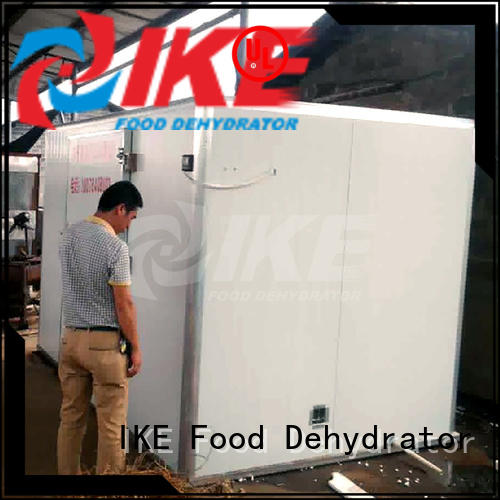 IKE industrial commercial food dryer machine for jerky