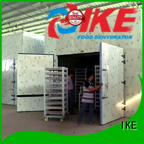 IKE Brand steel vegetable professional food dehydrator commercial supplier