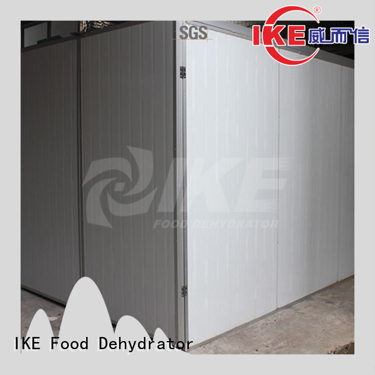digital raw food dehydrator machine drying IKE