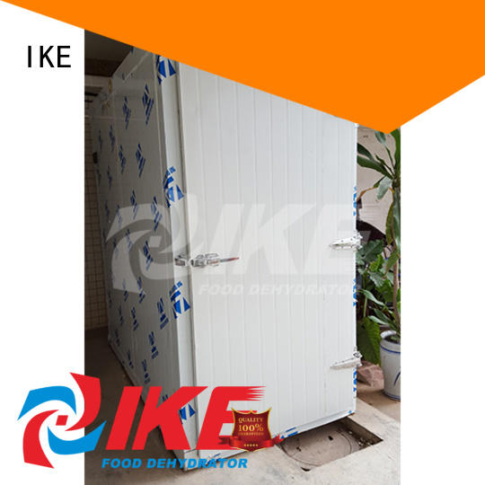 Wholesale vegetable professional food dehydrator industrial IKE Brand
