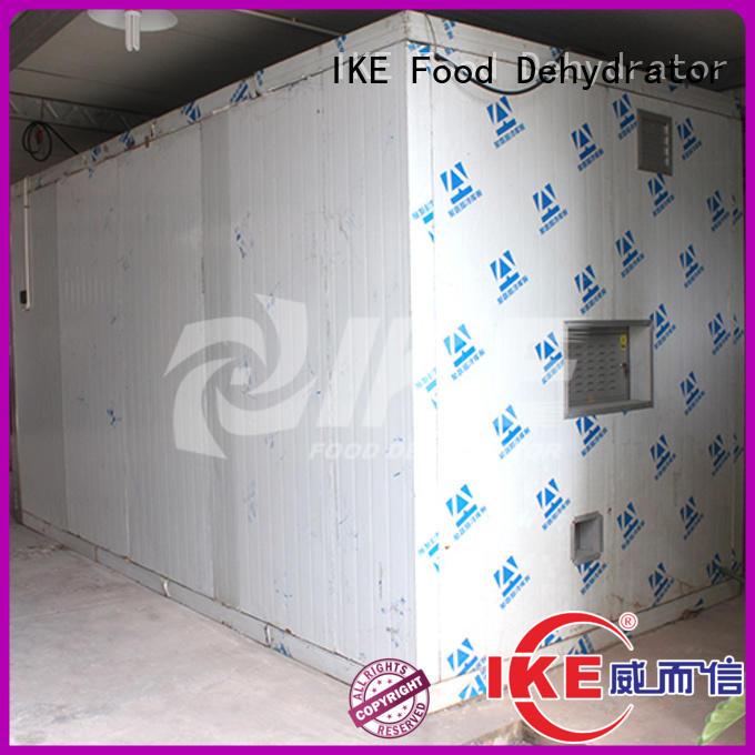 commercial dehydrator machine digital fruit IKE