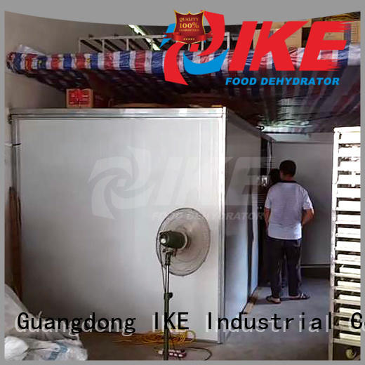 stainless temperature middle Hot dehydrator machine drying IKE Brand