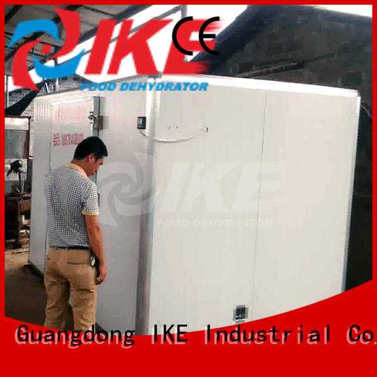 IKE commercial food dryer machine anti-temperature for drying