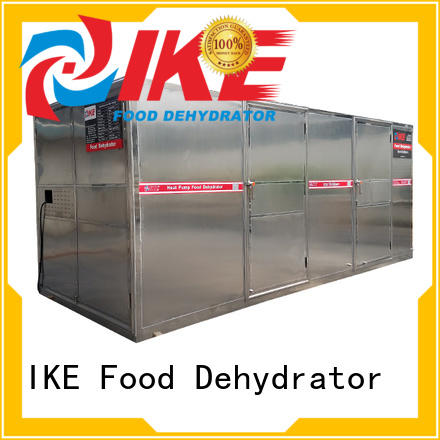 cheap food dehydrator stainless fruit IKE