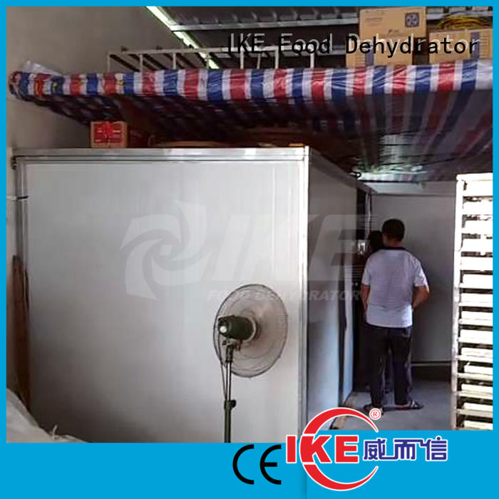 temperature Custom stainless dehydrator machine vegetable IKE