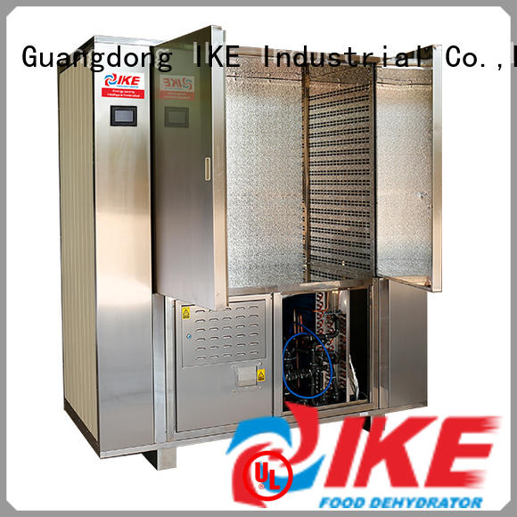 IKE laboratory cabinet dryer for food system for meat