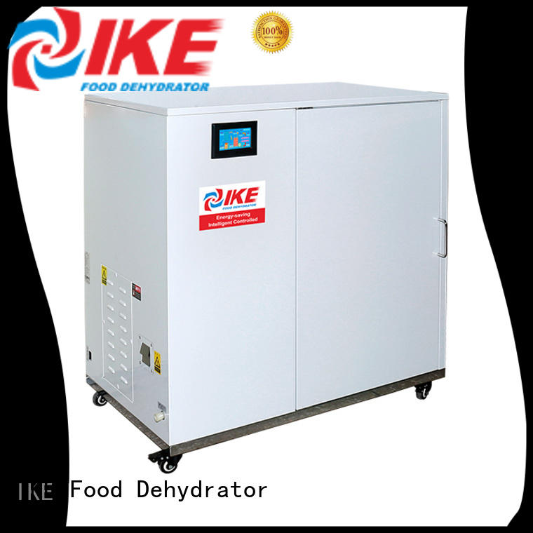 dehydrate in oven fruit stainless commercial food dehydrator chinese company