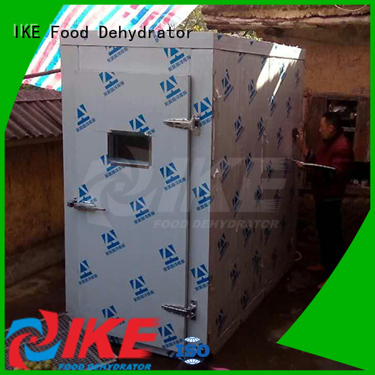 IKE industrial dryer machine easy-installation fruit