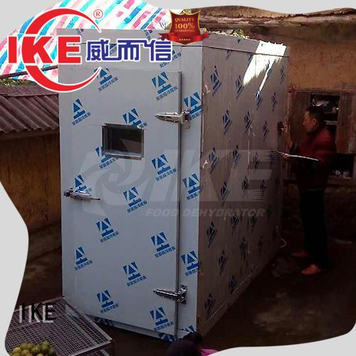 raw food dehydrator equipment for jerky IKE